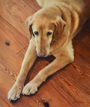 Dog portrait of Gilda - 12