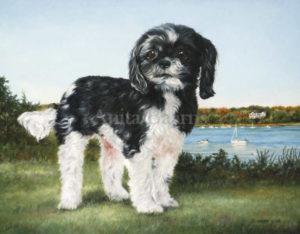 Dog portrait of Emma - 11