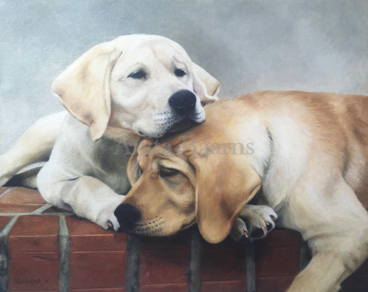 Dog portrait of Dog's Best Friend