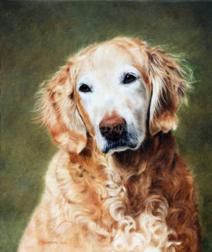 Dog portrait of Lacey - 12