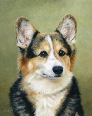 Dog portrait of Louis - 8