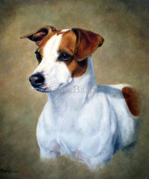 Dog portrait of Mr. Max - 11