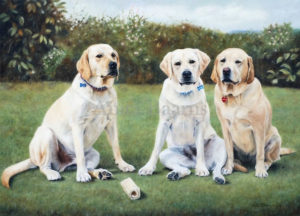 Dog portrait of Riley, Mackie and Sandy - 22